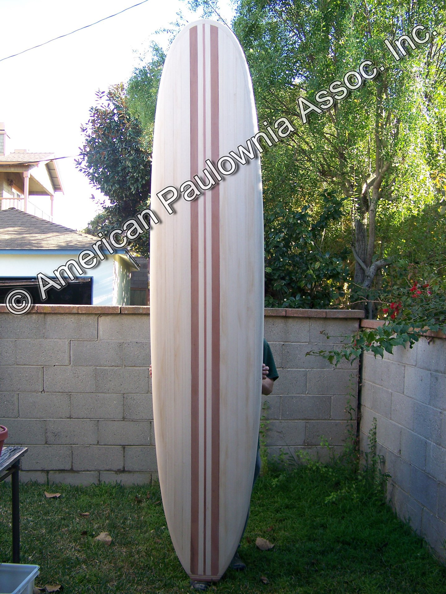 Hollow Construction Longboard from Paulownia Wood