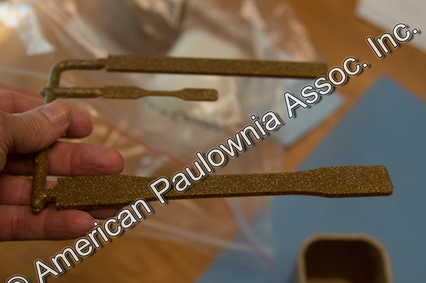 Plasticized Paulownia wood flour test strips